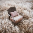 Royalty-Free Stock Photo: Snowy Vintage Chair