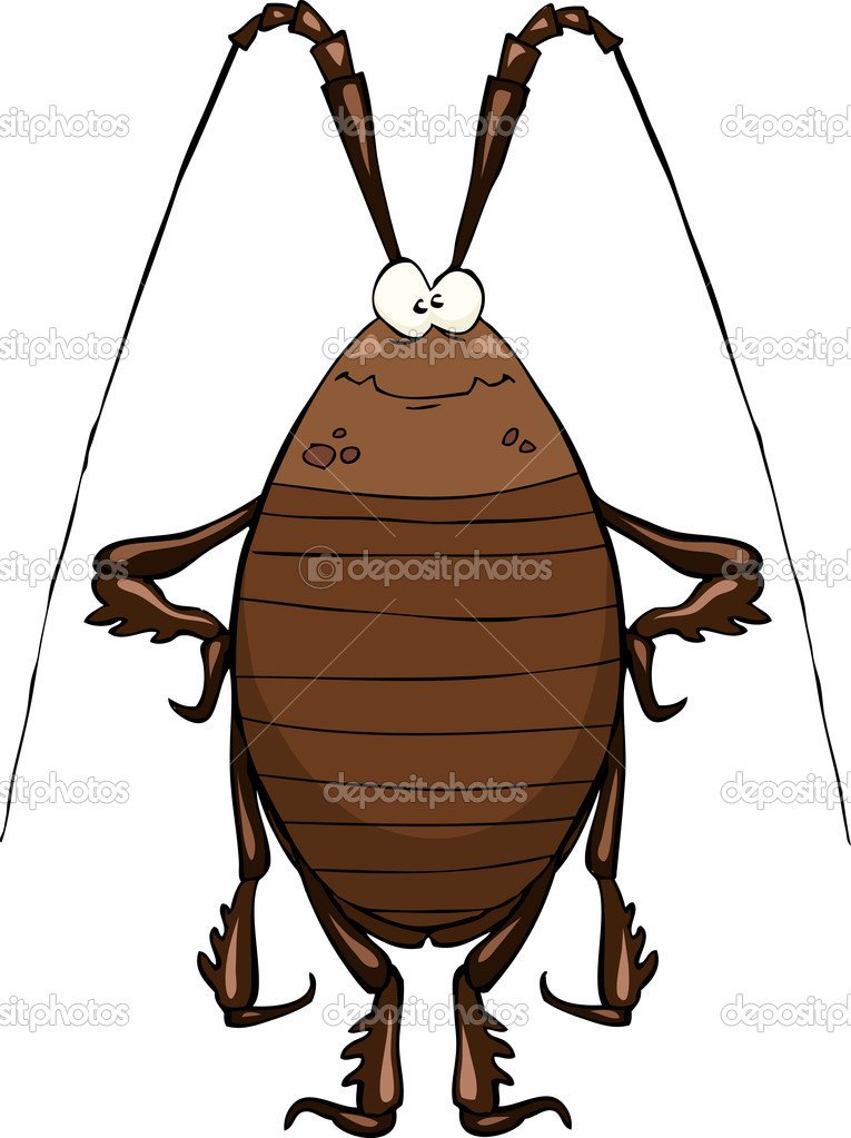 Cockroach on a white background vector illustration — Stock Vector #11117234