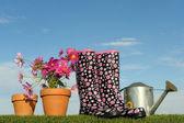 Gardening concept five — Stock Photo