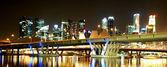 Vista nocturna de singapur con puente — Foto de Stock