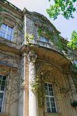 Column of castle — Stock Photo