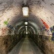 Graffiti tunnel — Stock fotografie #11448518