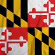 图库照片: Flag of Maryland, USA