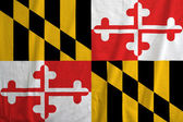 Flag of Maryland, USA — Stock Photo