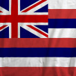 Stock Photo: Flag of Hawaii, USA