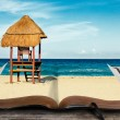Beach scene in book — Stock Photo #11317212
