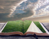 Open bible with pathway — Stock Photo