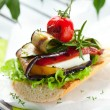 Grilled vegetables on toast — Stock Photo #10797750