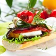 Grilled vegetables on toast — Stock Photo #10797792
