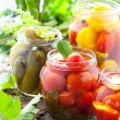 Preserved vegetables — Stock Photo #11018884