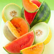 Melons and watermelon — Stock Photo