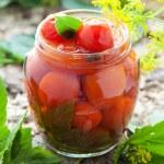 Homemade tomatoes preserves — Stock Photo