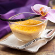 Vanilla flan — Stock Photo