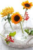 Slunečnice a chryzantém — Stock fotografie