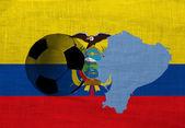 Ecuador Football — Stock Photo