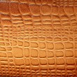 Royalty-Free Stock Photo: Brown leather texture with patterns