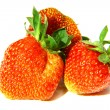 Strawberry macro — Foto de Stock