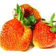 Strawberry macro — Stockfoto