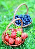 Två flätade korgar fulla av jordgubbar och blåbär — Stockfoto