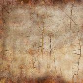 树树皮的纹理 — 图库照片