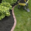 Stock Photo: Mulching Around Hostas