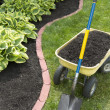 Mulch Bed With Edging — Stock Photo