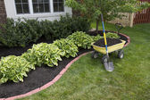 Mulching around the Bushes — Foto Stock
