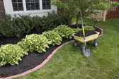 Mulching em torno dos arbustos — Foto Stock