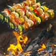 Skewers over open fire — Stock Photo #11312446