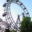 Stock Photo: Viennwheel