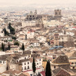 Granada with Cathedral — Foto de Stock
