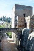 Pont du château alhambra — Photo