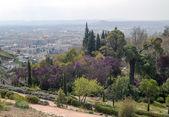 Garden of Granada — Stock Photo