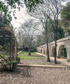 Jardin avec arbres et un pont — Photo