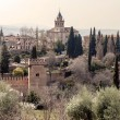 Nasrid monument of Alhambra — Stock Photo #11310985