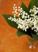 Lily of the valley in vase on wood bockground — Stock Photo