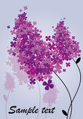 The branch of blooming lilacs — Stock Vector