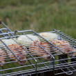Grilled chicken in barbecue on the grass — Stock Photo