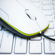 Computer mouse on the laptop — Stock Photo #12047885
