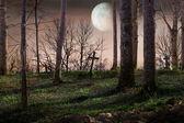 Night with a full moon over the cemetery — Stock Photo