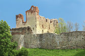Livonian Order castle ruins — Stock Photo