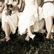Bride and bridesmaids legs — Stock Photo #11108973
