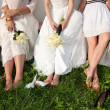 Bride and bridesmaids legs — Stock Photo #11108987