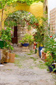 Small street full of flowers on a Greek island — Stock Photo