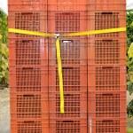 Almeria greenhouse cucumber plantation — Stock Photo