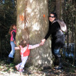Stock Photo: Family around tree