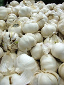 Garlic — Stockfoto