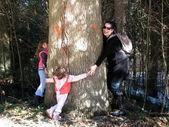 Family around the tree — Stock Photo