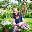 Stock Photo: Young woman gardening