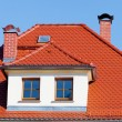 Tiled roof - Foto de Stock  
